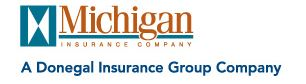 Michigan Insurance